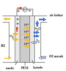 bagan fuel cell