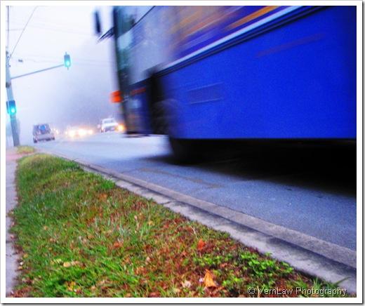 BusP7300742(1)