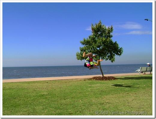 TreeBoyDSC00748(1)