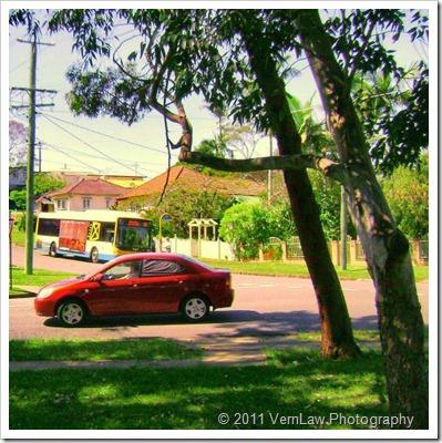 CarPastdsco2293