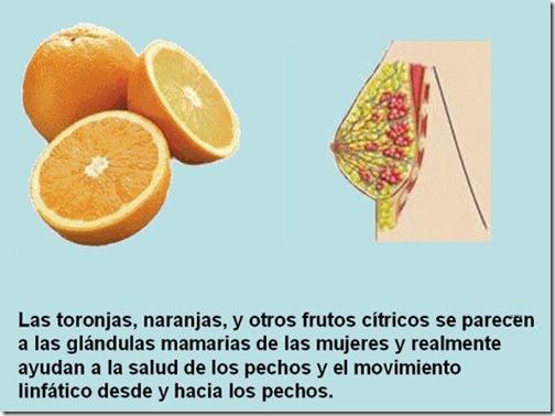 frutas 11