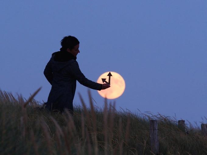 luna - mi gallinero (9)