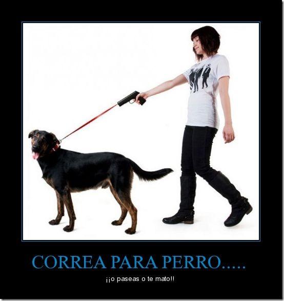 CR_187000_correa_para_perro