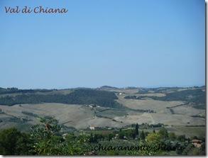 03-09-2009_val_di_chiana 006