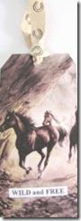 aawa horse tag7.10