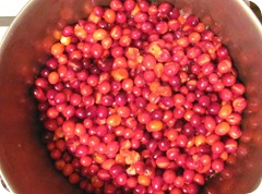 Jellied cranberry sauce cooking skins popping1
