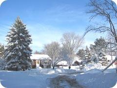 1.27.11 snowstorm sideyard3