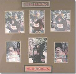 1986 Lion Country Safari 2