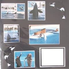 1986 Florida Seaworld orca stickers