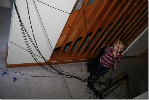 2010-10-28 Kahlen's Spider Web (9)