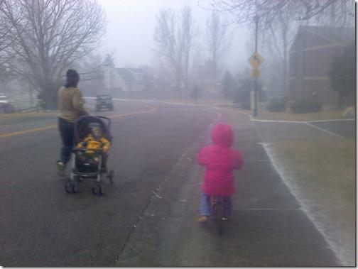 2011-01-19 Snow Storm (01)