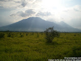 nomad4ever_java_baluran_CIMG5153.jpg