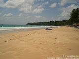 nomad4ever_thailand_phuket_CIMG0162.jpg