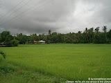 nomad4ever_philippines_camiguin_CIMG0553.jpg