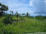 nomad4ever_indonesia_sulawesi_pulau_gangga_CIMG2653.jpg