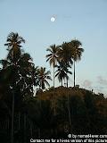 nomad4ever_indonesia_sulawesi_manado_bunaken_CIMG2466.jpg