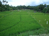 nomad4ever_indonesia_sulawesi_manado_bunaken_CIMG2474.jpg