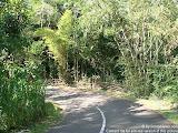 nomad4ever_indonesia_bali_landscape_CIMG1920.jpg