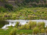 nomad4ever_indonesia_bali_landscape_CIMG1992.jpg
