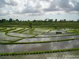 nomad4ever_indonesia_bali_landscape_CIMG2371.jpg