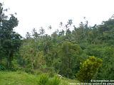 nomad4ever_bali_waterfall_hotsprings_CIMG5049.jpg