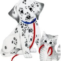 CatDog's3.jpg