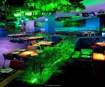 elia_felices_blub_lounge_club_proyecto-diseño-interiores