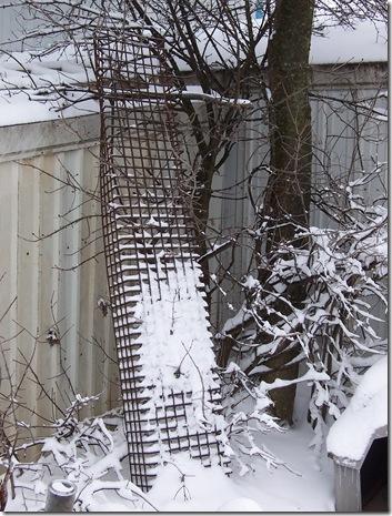 snow 1.30.2010 024