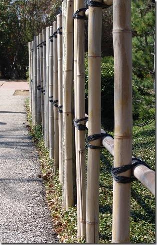 Botanical Garden 012