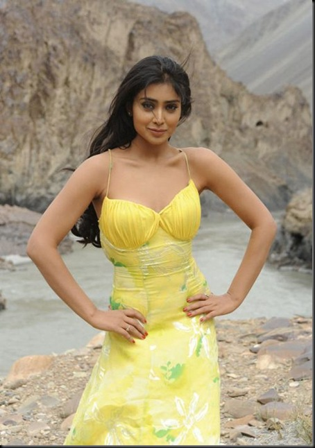Shriya_Saran_photos_(1)