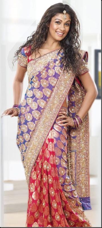 Nayanthara_pothys_Designer_Sarees_stills_02