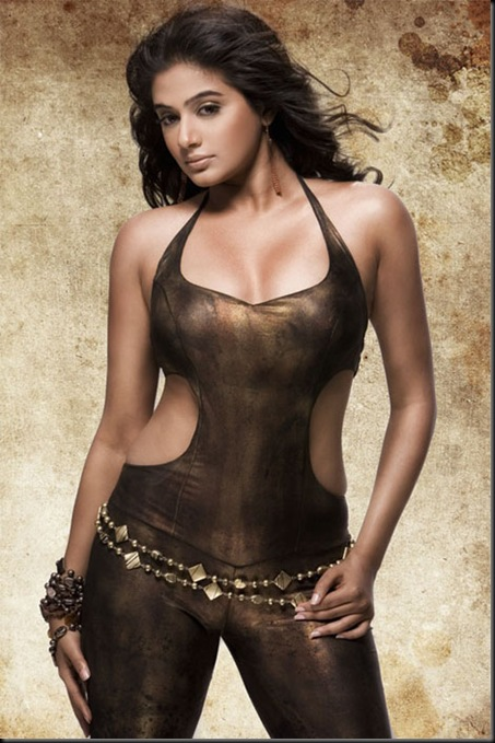 Priyamani Latest hot photoshoot (5)