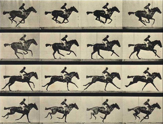 Eadweard-Muybridge-stop-motion.jpg
