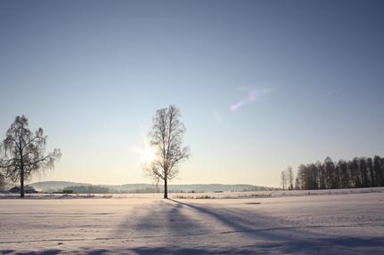 vinter15