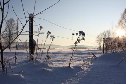 vinter10