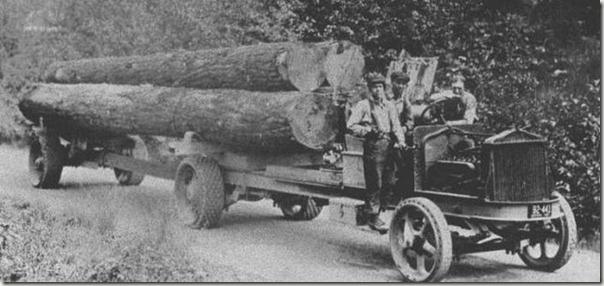 enormes árboles talados cosasdivertidas (15)