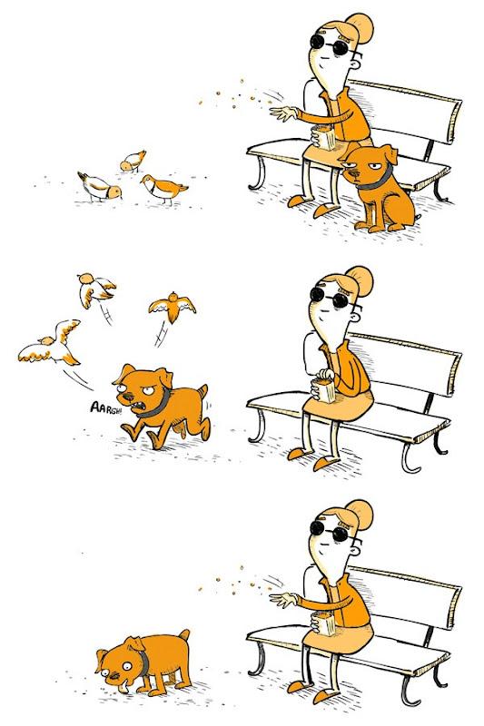 humor cosasdivertidas (4)
