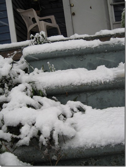 snow! 017