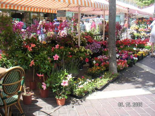 Cours Saleya Flower Market
