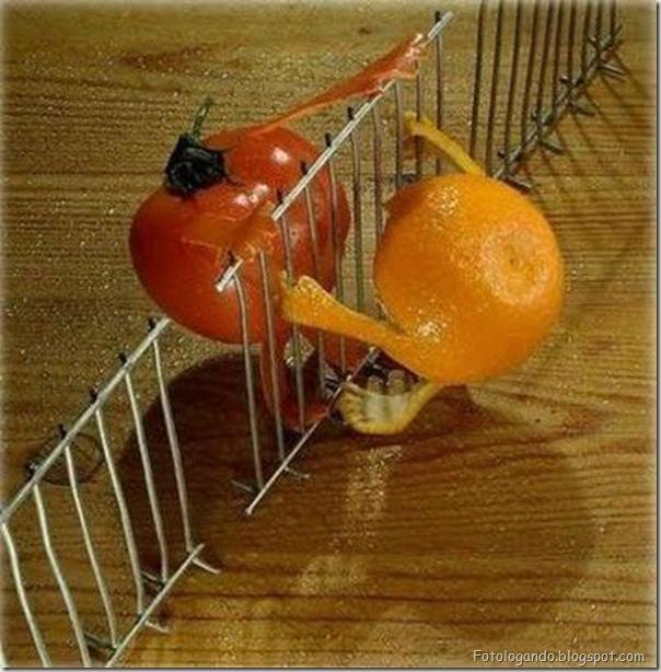 Diversão com frutas, legumes, ovos e outras coisas (118)