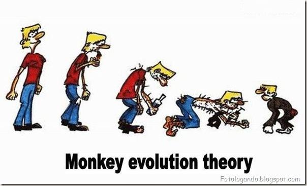 Diferentes tipos de evolução (16)