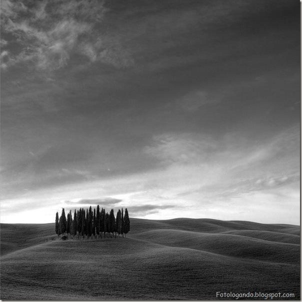 Fotos artísticas em preto e branco (15)