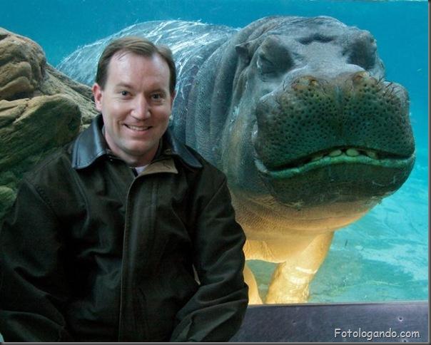 Fotos de animais no zoo capturadas no momento certo (27)