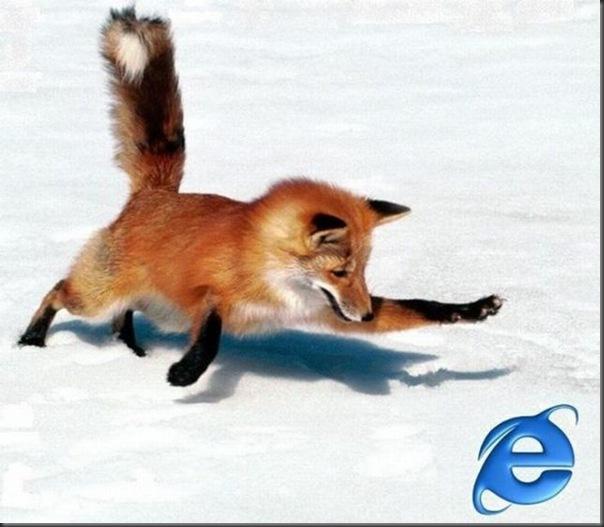 Mozilla brincando com a Internet Explorer