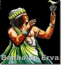 ossain, banho de ervas, banho de descarrego, banho de limpeza, banho para sorte, banho para mau olhado banho de atração