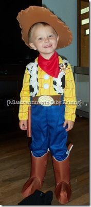 Toy_Story_3_Woody
