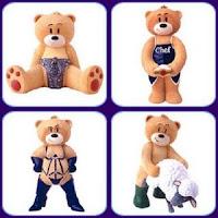 bear-osos (69).jpg