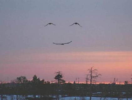 la sonrisa de Dios