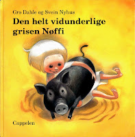 Bildebok / Picture book