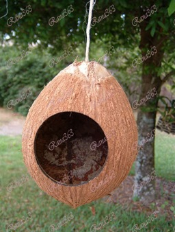 Hang-Your-Birdhouse